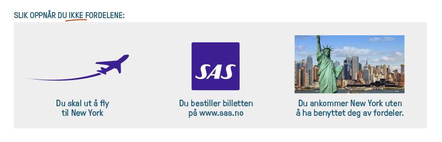 Illustrasjon1-SAS
